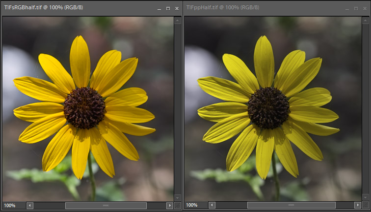 Problems Once Exporting From Lightroom 4