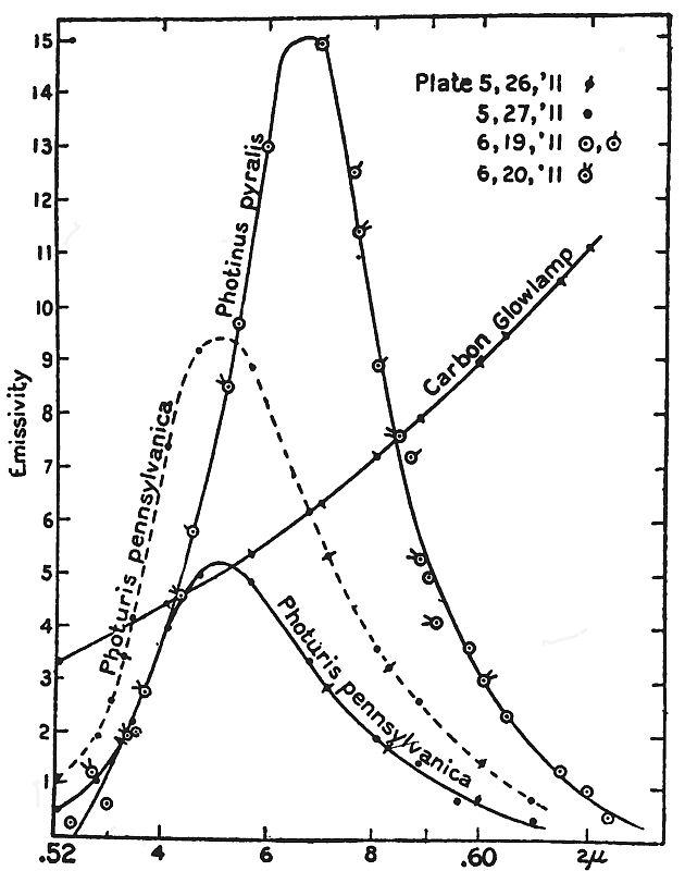 Index Of Photlightingglow